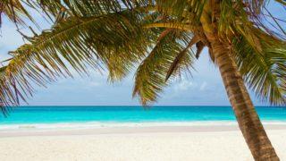 【セブ 観光】セブに行ったら絶対に訪れてほしい場所モアルボアル島